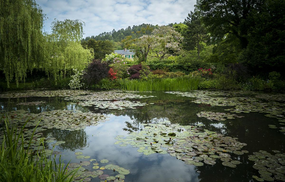 Das Malen des modernen Gartens: Monet bis Matisse (OmU)